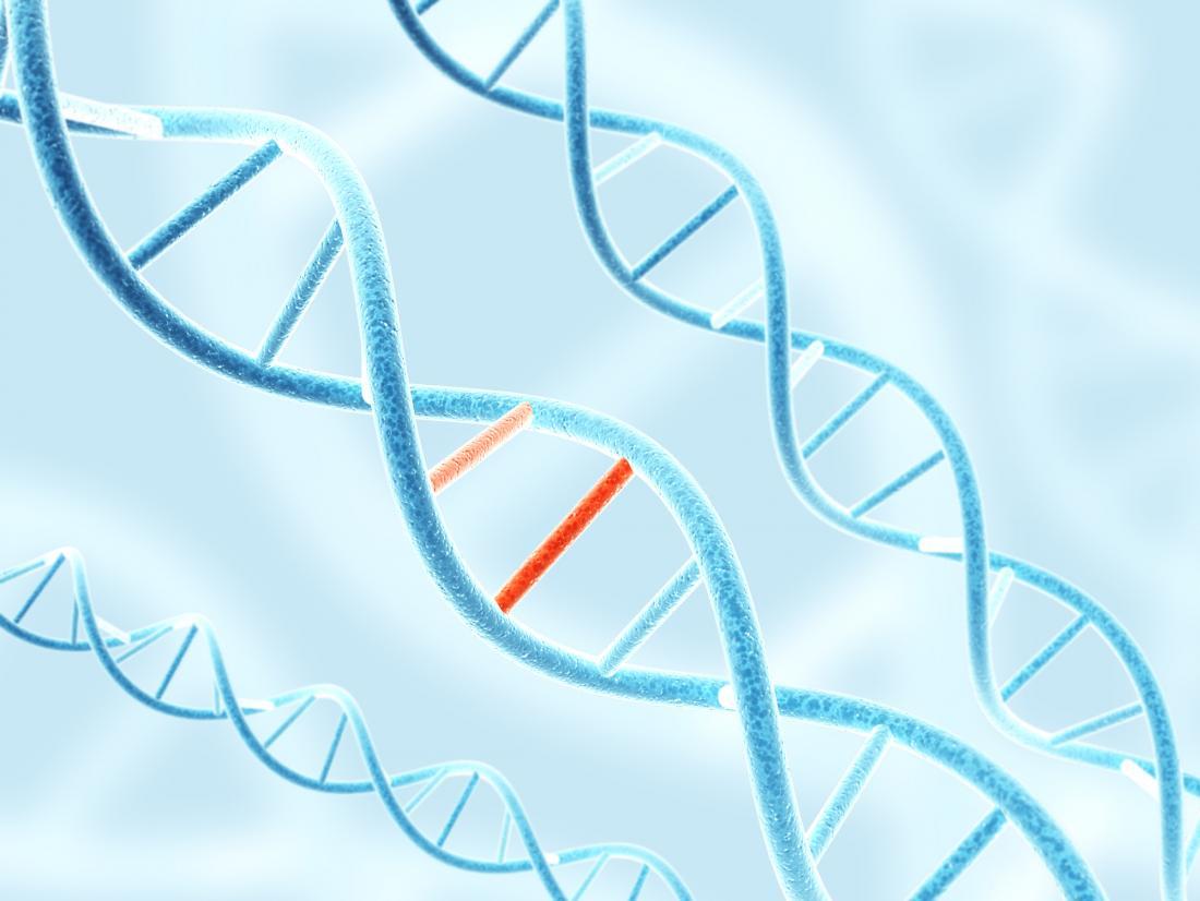 Có thể sử dụng đột biến gen để điều trị bệnh tiểu đường và bệnh tim?