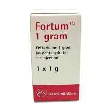 FORTUM 1G